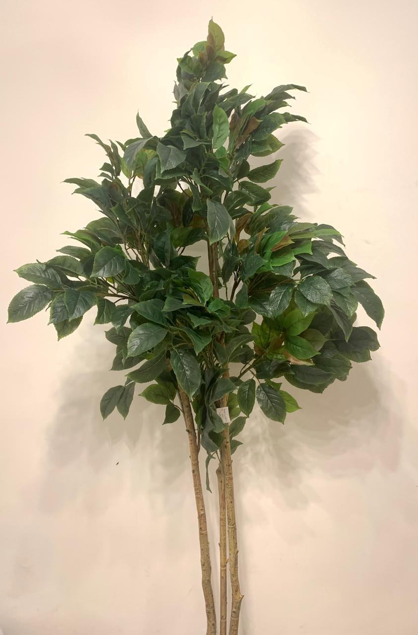 Artificial Benjamina Tree - Big Leaf