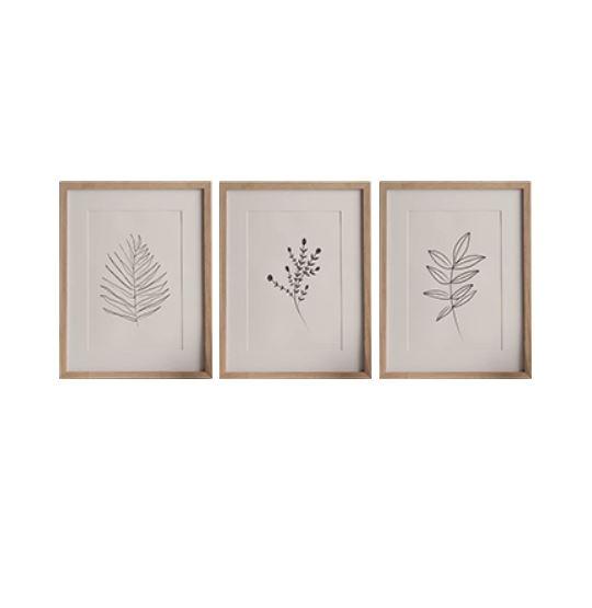 Branch Drawing Prints set - W 30 x L 40 cm