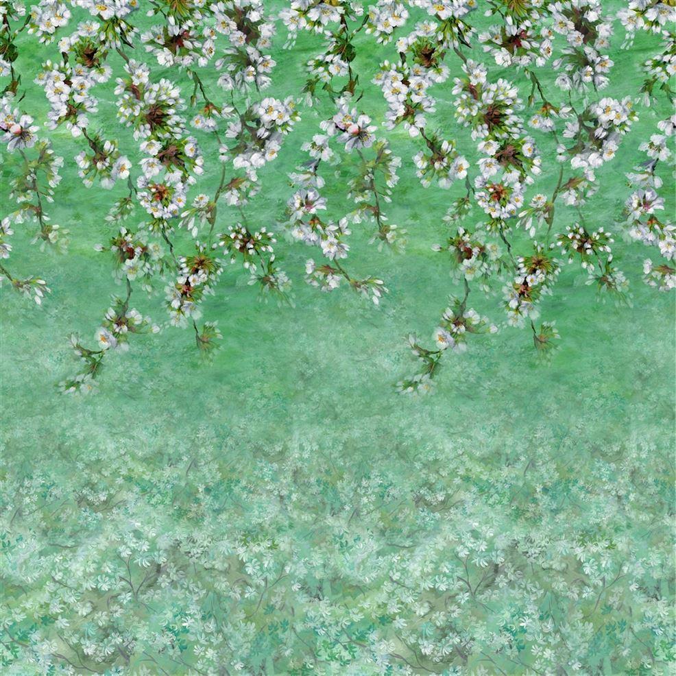 Assam Blossom Wallpaper