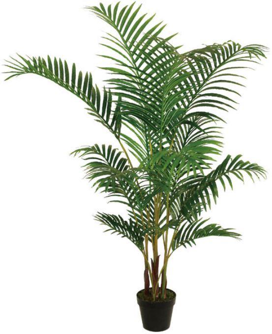 Artificial Areca Palm Plant - 180cm