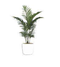 Artificial Areca Palm Plant  (without pot)