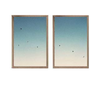 Sky & Birds Posters